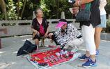 給泰山奶奶做繡花鞋的人
