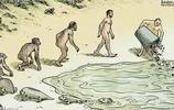 九張人類進化圖 諷刺意味十足 細思極恐 你看懂了嗎