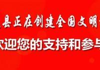 中華人民共和國民法總則(第七章)