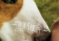"""《一條狗的使命2》票房大賣,但""""爛片""""就是""""爛片"""""""