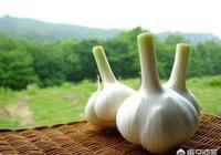 天天吃生蒜對身體有什麼影響?