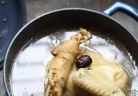新鮮人蔘怎麼吃?紅棗人蔘燉雞湯 補元氣延年益壽