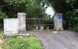 實拍臺灣閻錫山墓地:墓碑朝向山西老家,圖8老人為他守墓至今