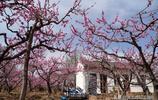 山西發現桃花源裡有千年地坑院,遊客進村後看農村生活變成啥樣