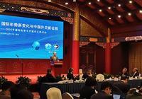 王毅外長談中國公民海外安全:對霸凌行徑絕不會坐視不管