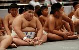 日本國粹相撲,從娃娃抓起