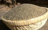 小米粥只是小米加水?下面才是小米粥正確的打開方式