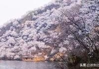 北京周邊哪些地方好山好水好景色?小長假去正好!
