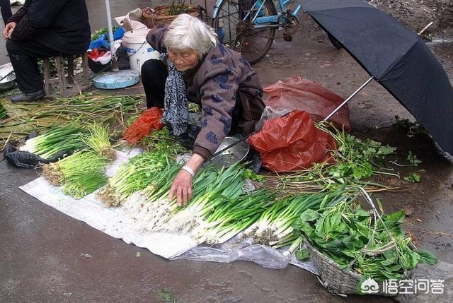 農民不想出去打工了,回家除了種田也沒事幹,該怎麼辦?