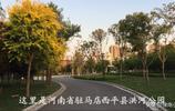 這裡是,河南省駐馬店西平縣。
