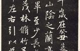 趙孟頫行書《趙鬆雪蘭亭十三跋》