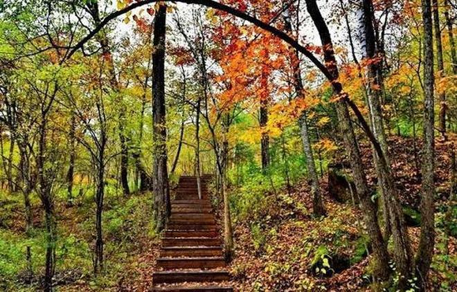 威虎山的秋天來了,帶你看這個《智取威虎山》的夾皮溝