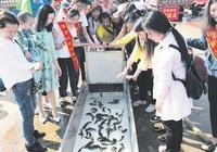 近百噸魚苗放流洞庭湖