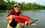 阿拉斯加當地出現大量紅色怪魚,當地居民稱其是經濟主要來源
