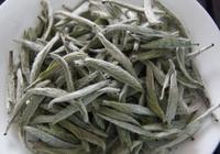 安吉白茶多少錢一斤?安吉白茶是不是很好喝?