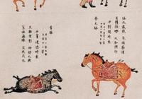 昭陵六駿的前世今生,海內外天各一方的唐太宗豪華坐騎何時能歸來