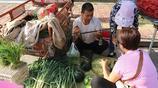 農村大集上西瓜賣1毛5,野生河蝦7元還送怪魚,撿到大便宜了?