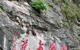 安徽一懸崖上,長有一株千年牡丹,具體生於何年,卻無人知曉