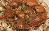秋風起,蟹腳癢;菊花開,聞蟹來