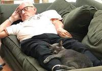 睡著覺就爆紅,一張照片就弄來一年物資,貓爺爺表示這太瘋狂了!