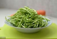 春季吃野菜正當時,養生專家:這個野菜有多種保健功效,不妨瞭解
