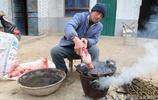 山西豬肉價格走低,5旬農民大哥用1個辦法1頭豬增收200元