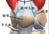 出現這3個標誌,說明你膝關節軟骨已退化,避免手術你要這麼做