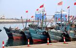 好吃不便宜 青島蝦爬50元一斤麵條魚10元兩斤 市民愛挑貝類打牙祭