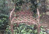 桂花椅子,桂花造型中最具難度的編扎