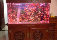 大魚缸下濾養小魚經常吸住小魚的解決方法
