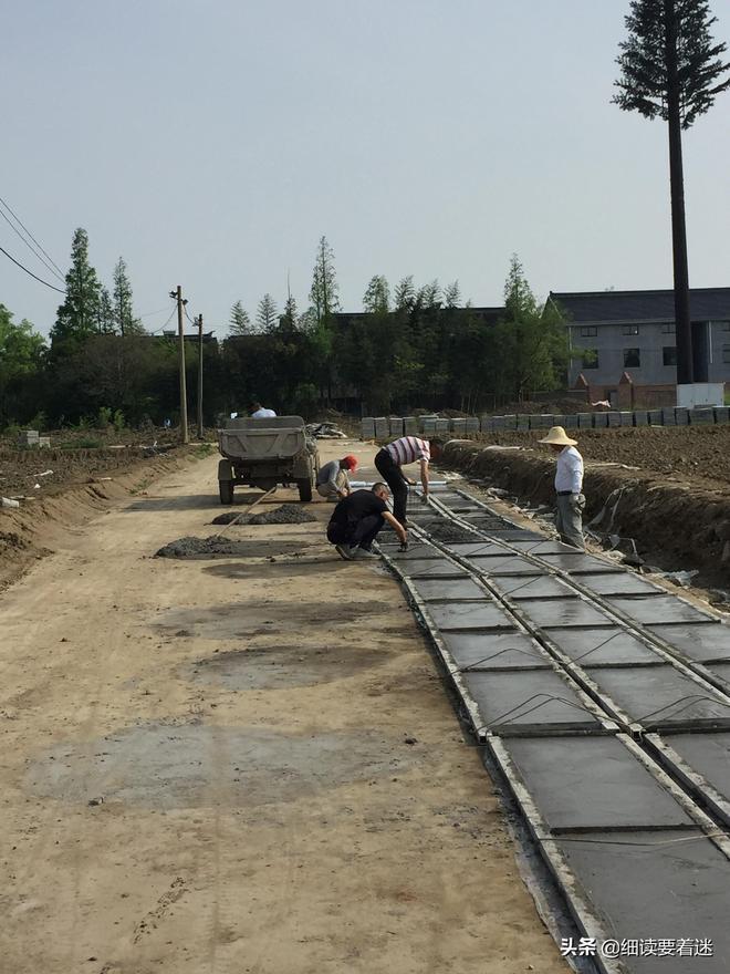蘇州近郊農民老陳的一條致富路