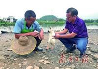 打造東華最大養殖基地 自家致富不忘身邊鄉親