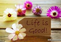 掙錢不矯情,花錢不磨嘰;日子過的是心情,生活要的是質量