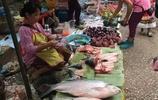 原始野性的老撾菜市場