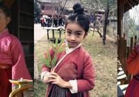 《羋月傳》三個小羋月的飾演者都已長大,最小的像楊穎!