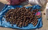 實拍濟南仲宮大集上山區農民的土特產,有你喜歡的嗎?