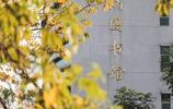 廣東這所高校設有客家研究院!還成立了大陸首家客家學院!