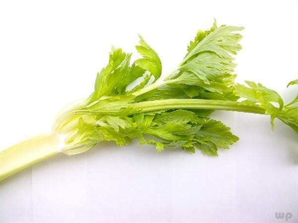 """""""這4鮮""""春天應常吃,可以增強免疫力,體質好了,精神狀態更好"""