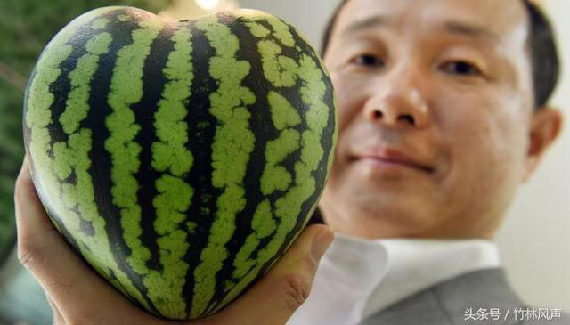 為什麼說日本人是用眼睛來吃水果的 原來是這樣