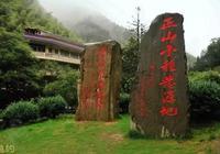 武夷山正山小種-開創世界下午茶之風