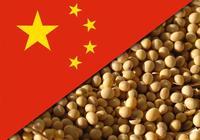 外媒熱猜中國大豆庫存後,有新進展,中國或購買了50萬噸美國大豆