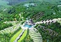 為何名人都想安葬在八寶山,第一個埋進八寶山的是誰?