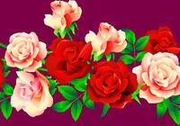 5月9日,祝願我的朋友幸福久久 健康久久 快樂久久 好運久久