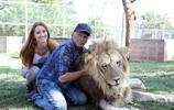 都是鏟屎官,美國富豪鏟的卻是獅虎的屎,養200只獅虎做寵物