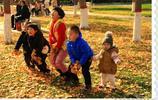 童趣、春色、渭南的公園景色,小編帶您看攝友作品