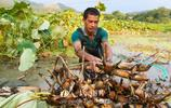 江西金溪:特色種養富農家