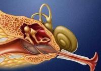 中耳炎的普及知識