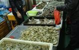 時令海鮮一天一個價 蝦虎70元一斤 八帶38元一斤 新鮮鮁魚受青睞