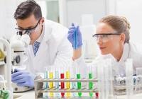 你需要知道的關於歐米伽-3、 歐米伽-6和歐米伽-9脂肪酸的知識