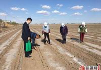 """中國郵政儲蓄銀行新疆區分行全力做好春耕期間""""三農""""金融服務"""